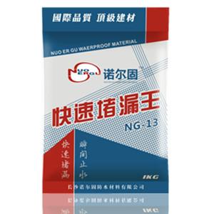 NG-15 缓凝型堵漏王(水不漏)