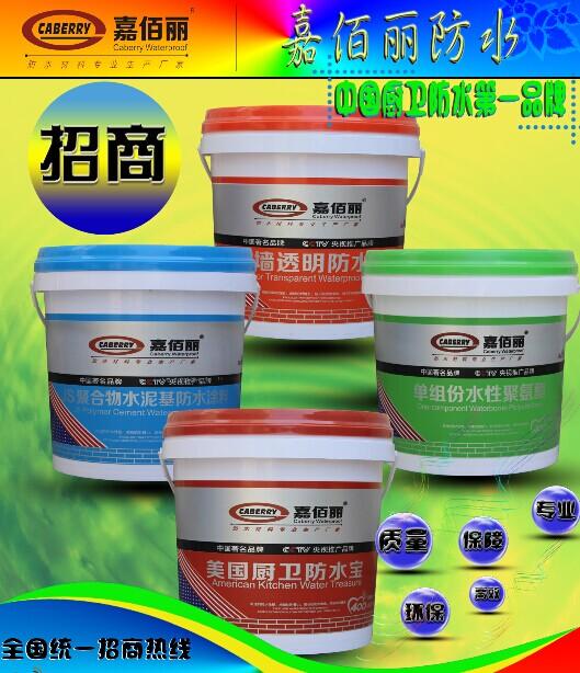 点击查看中国防水品牌DPS永凝液招商详细说明