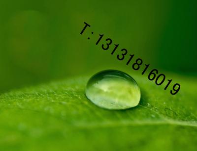 点击查看甲基硅酸纳有机硅防水剂DPS永凝液详细说明