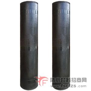 点击查看厂家供应筑龙TJ-242型SBS弹性体改性沥青防水卷材详细说明