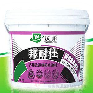 邦耐仕多用途透明防水涂料产品图片