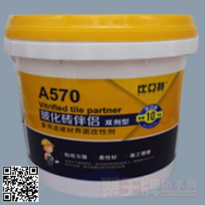 A570玻化砖伴侣 产品图片