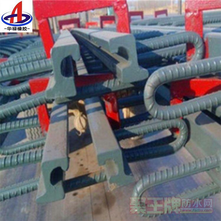 供应RG型桥梁伸缩缝淮南信誉好的厂家