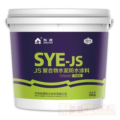 JS聚合物防水涂料 产品图片