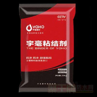 瓷砖粘结剂1型 产品图片