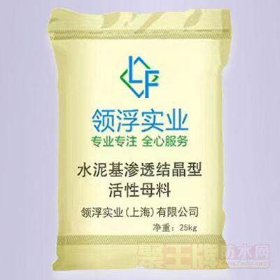 水泥基渗透结晶(活性母料)