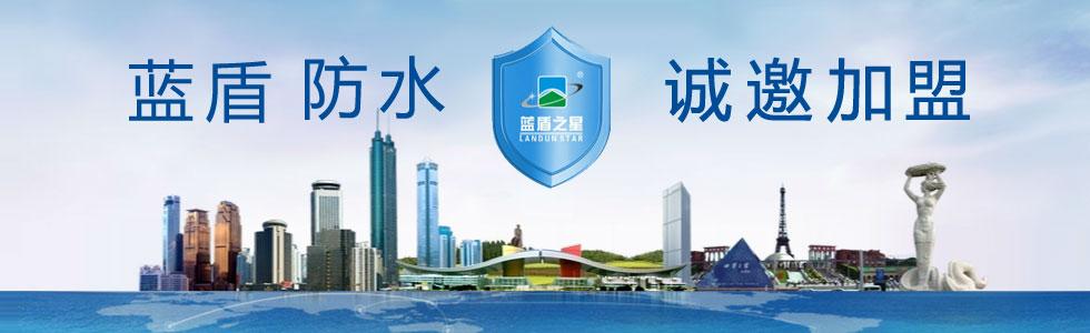 深圳蓝盾之星投资(集团)股份有限公司