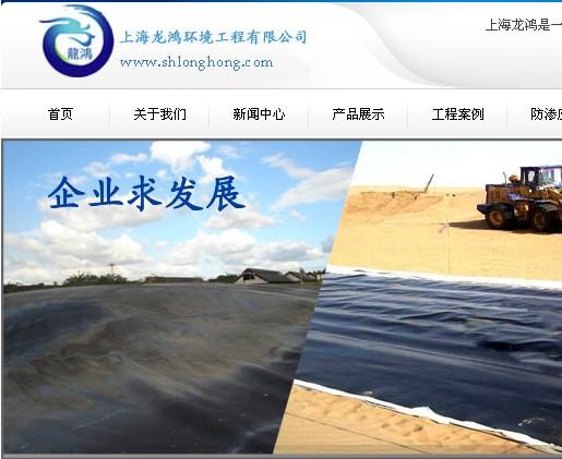 上海龙鸿土工膜网站截图