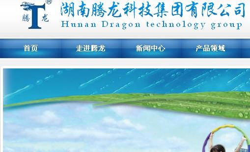 湖南腾龙科技集团有限公司网站截图