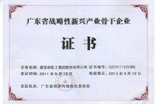 广东省战略新兴产业骨干企业