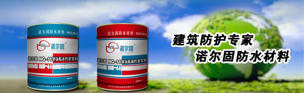 长沙诺尔固防水材料有限公司