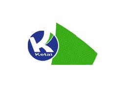 天津开发区科泰化工新材料开发有限公司企业形象图片logo