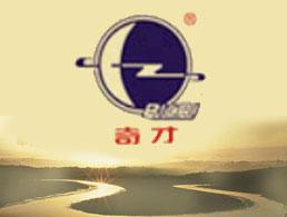 天津市奇才防水材料工程有限公司企业形象图片logo