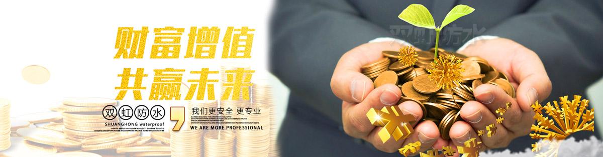 美国双虹(中国)建材有限公司