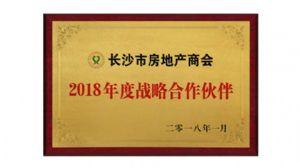 2018年度战略合作伙伴