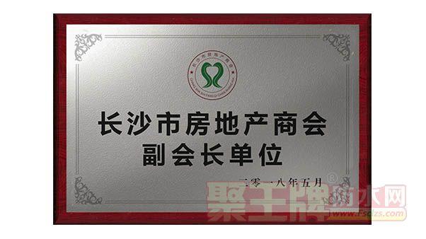长沙市房地产商会副会长单位