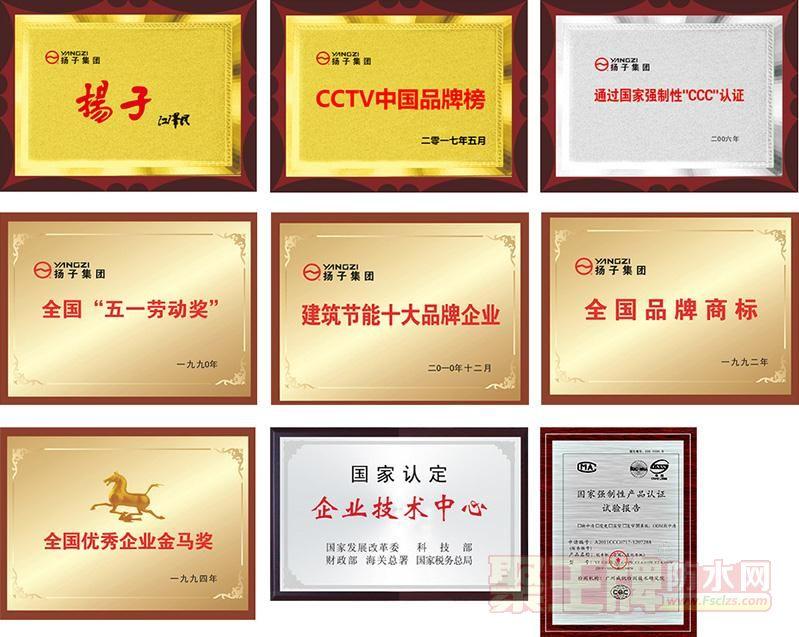 扬子集团荣誉证书