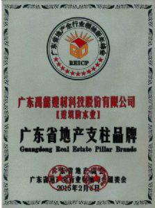 广东省地产支柱品牌证书