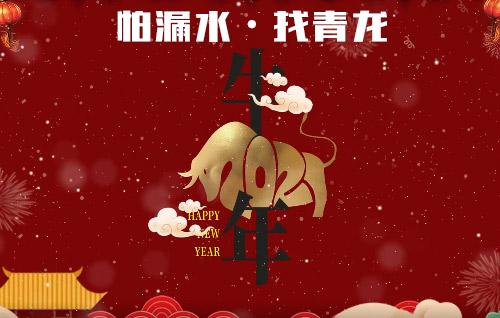 恭贺新春,牛年大吉|青龙公司给您拜年啦!