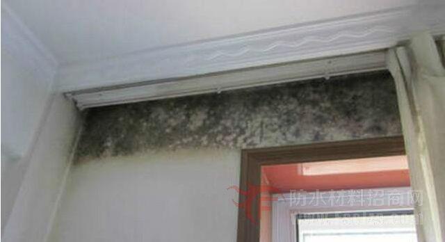 入住不久墙面就长斑渗水发霉?这有解决方法!