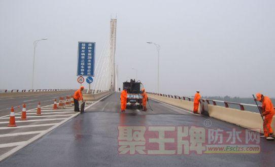 桥面防水专用防水涂料-fyt-1桥面防水涂料