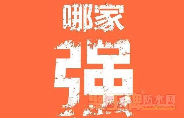 中国民族涂料品牌哪家强!.png