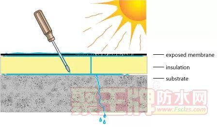 聚王牌小知识:延长屋顶防水材料寿命的3个方法.png