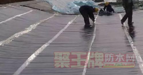【防水技术】浅谈预铺法防水材料的应用