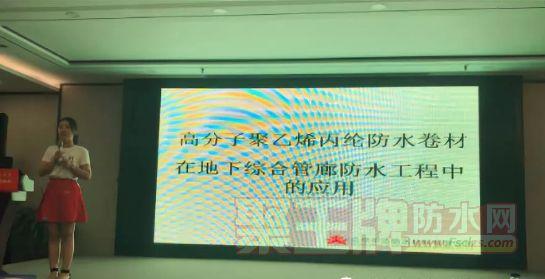 圣洁防水副总经理郑丹.png