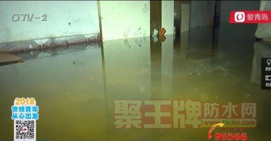惹不起也躲不起的邻居:地下室漏水 蚊子成住客.png