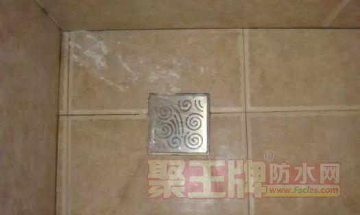 地漏位于两片瓷砖交接处