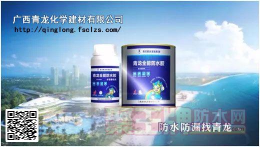 广西青龙化学建材有限公司