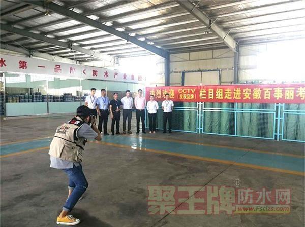 CCTV《发现品牌》栏目组对百事丽防水企业实地考察.png