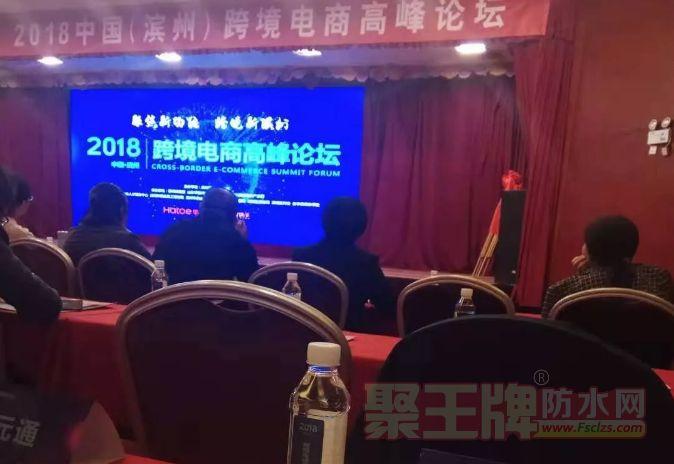 良友防水参加了2018中国(滨州)跨境电商高峰论坛