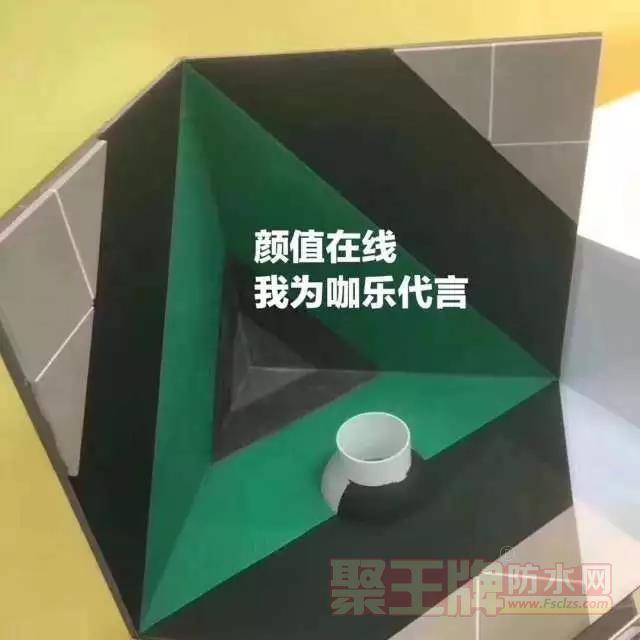 咖乐防水颜值在线,彩色空间才炫!伟星新材旗下防水品牌
