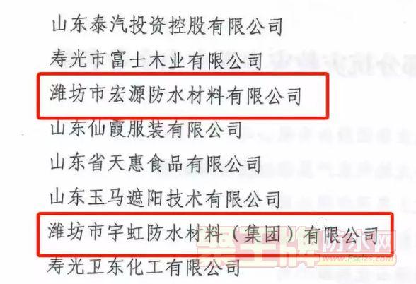 宇虹防水、宏源防水因在寿光抗洪救灾工作中表现突出获政府表彰!.png