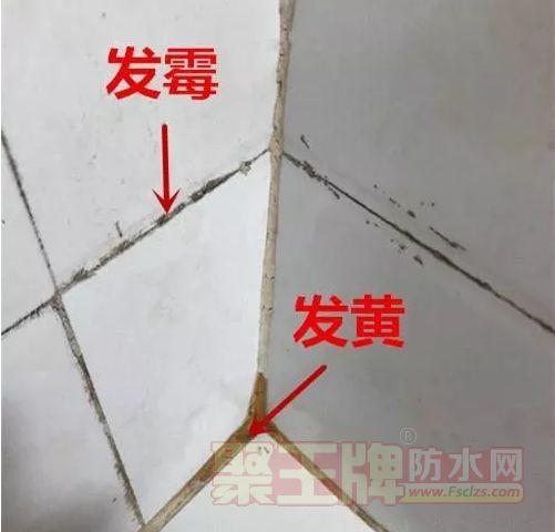 砖缝变黑会滋生细菌.png