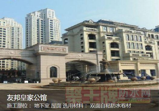 丽天防水工程实例友邦皇家公馆