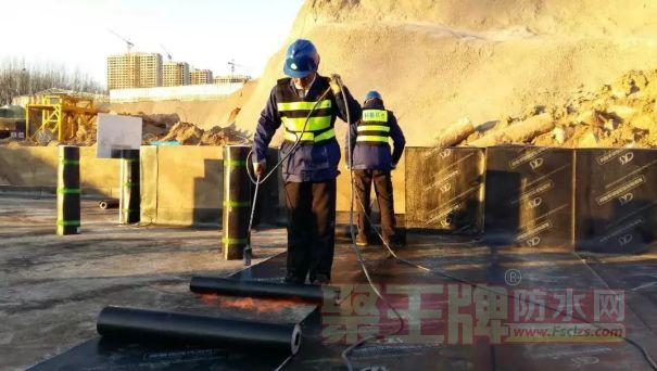解决工程三大难题,增强型APP防水卷材正式上市!