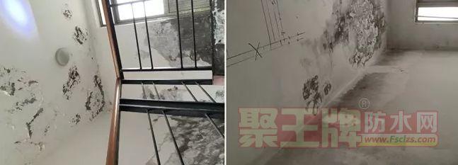 房屋外墙保护层老化,造成内墙渗水
