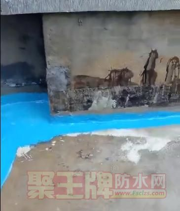 直击青龙全能防水胶施工现场