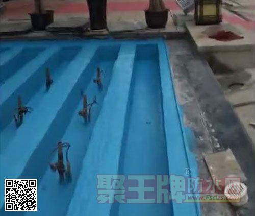 加盟防水就来看看粤高水池专用蓝色经典防水涂料!