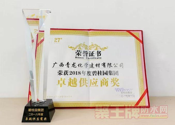 """青龙荣获碧桂园集团2018年度""""卓越供应商""""奖.png"""