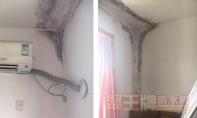 房屋渗漏导致室内墙面发霉,该如何解决?