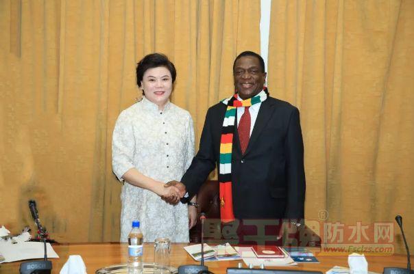 女娲集团董事长高爱芹女士随中国商务代表团 赴非洲津巴布韦共和国交流考察