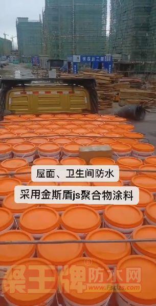 西藏防水工地:金斯盾js聚合物防水涂料强势进驻西藏工地