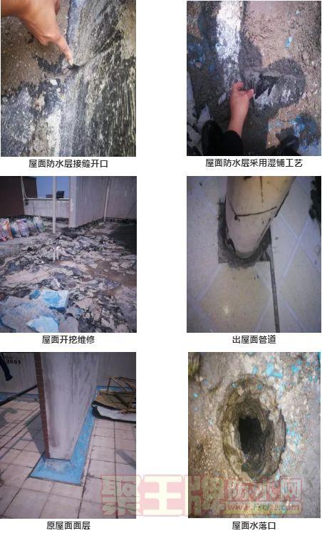 屋面防水 非典型倒置式屋面渗漏系统修缮方案