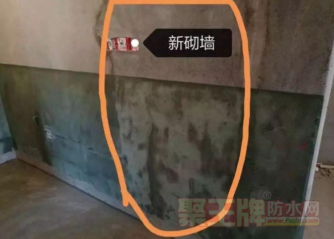 家庭泛碱砖墙如何处理 防水涂层容易出现泛白泛碱!
