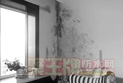 房屋渗漏水怪谁?防水材料该背锅吗?