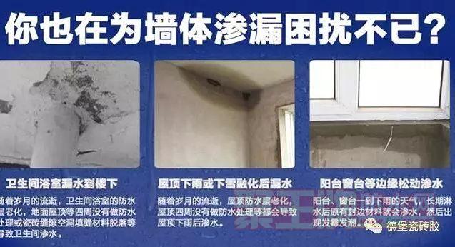 墙体发霉有什么危害 墙体出现发霉的原因!